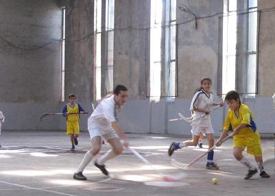 ARMENIAN FLOORBALL